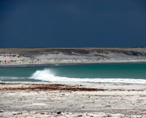 Falkland Islands beach