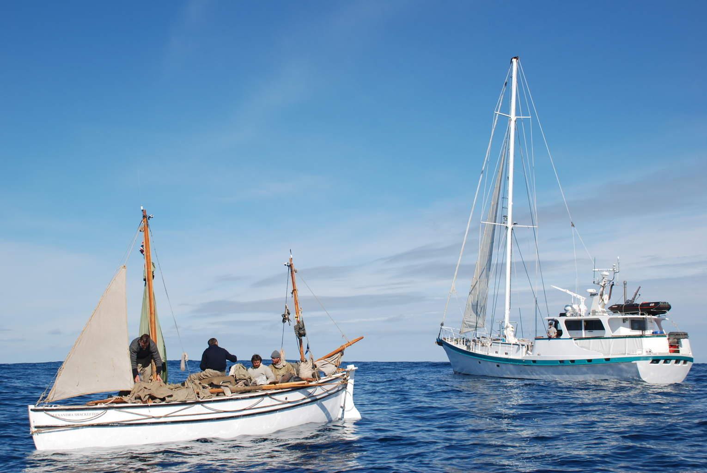 Shackleton: Death or Glory | Tim Jarvis
