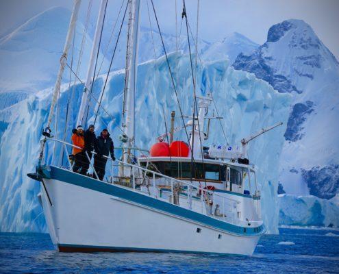 Our vessel Australis antarctica 60 minutes