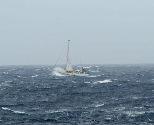 yacht Australis in Drake Passage